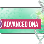 theta-healing-advanced-dna-seminar